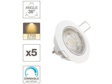 Lot de 5 spots encastrés Orientables - lumière chaude - dimmable - PACK5SP50ABD - Xanlite