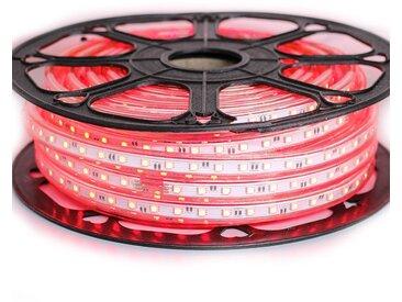 Ruban LED Professionnel 5050 60 LED/m de 25 ou 50 mètres Rouge étanche (IP68) | Longueur: 50 mètres