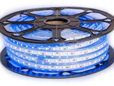 Ruban LED Professionnel 5050 60 LED/m de 25 ou 50 mètres Bleu étanche (IP68) | Longueur: 50 mètres