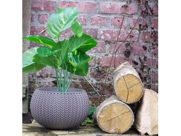 Pot + Cache pot CURVER aspect tricoté - taille S - Violet