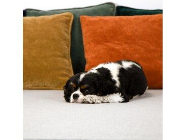 Housse de coussin en velours orange 45x45 cm - Lingi