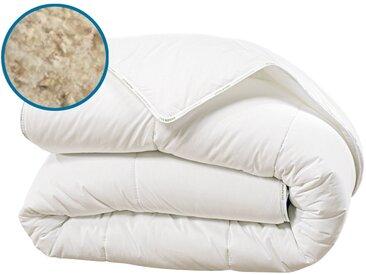Couette en laine 300g 200x200 cm - Laine