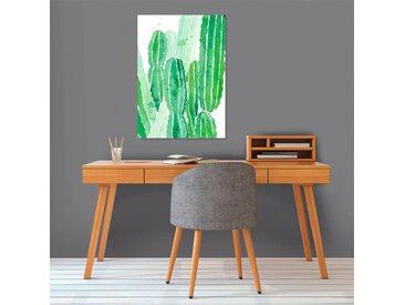 Poster papier 50 x 70 cm - Cactus