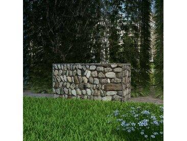 Panier de gabion Acier galvanisé 100x50x50 cm - vidaXL