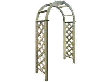 Arche avec treillis Bois de pin vert imprégné FSC - vidaXL