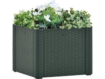 Lit surélevé de jardin avec système d'arrosage Vert 43x43x33 cm - vidaXL
