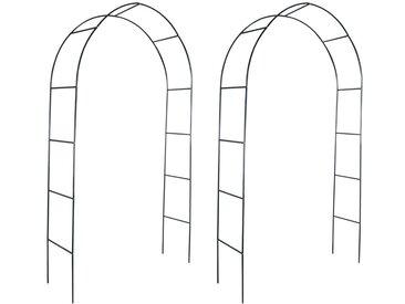 Arche de jardin 2 pcs pour plantes grimpantes - vidaXL