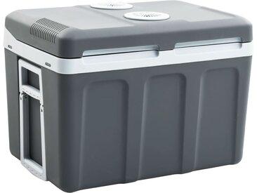 Glacière portable thermoélectrique 45 L 12 V 230 V A++ - vidaXL