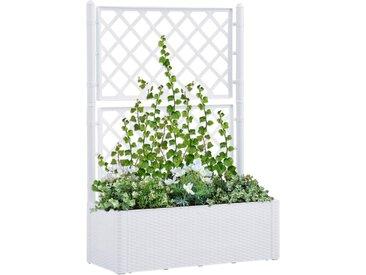 Lit surélevé de jardin et treillis et système d'arrosage Blanc - vidaXL