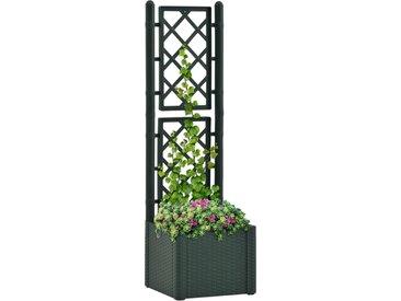 Lit surélevé de jardin et treillis et système d'arrosage Vert - vidaXL