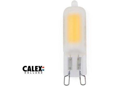 Ampoule LED G9, 2W compatible avec un variateur, givré