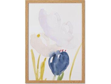 Lisa Hardy, 'Floral IV', illustration en édition limitée et cadre en bois format A3