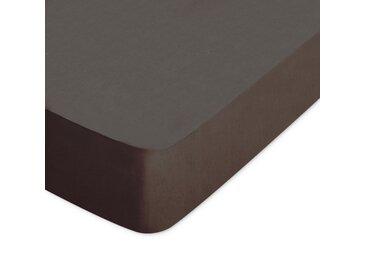 Drap housse uni 190x220 cm 100% coton ALTO Manganese