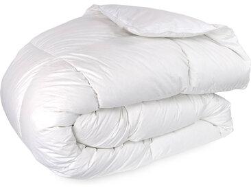 Couette 300x300 cm hiver FINLANDE garnissage naturel duvet de canard 300 g/m2