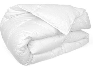 Couette 260x240 cm hiver CAP NORD garnissage naturel duvet d'oie 400 g/m2