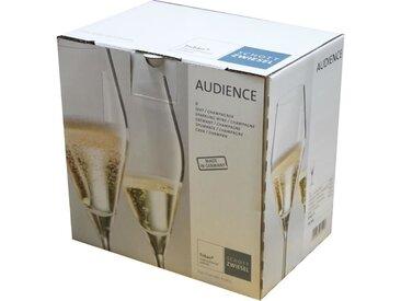 SCHOTT ZWIESEL Boîte de 6 flûtes à champagne Audience - 25 cl