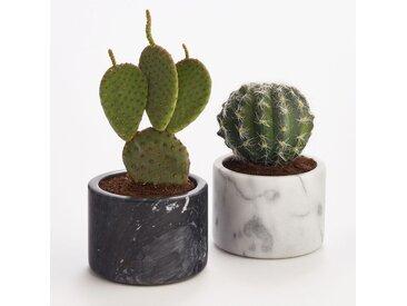 Pot en marbre moyen modèle h8 cm, Sevan AM.PM Marbre