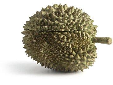 Boite petit modèle, Durian AM.PM Vert