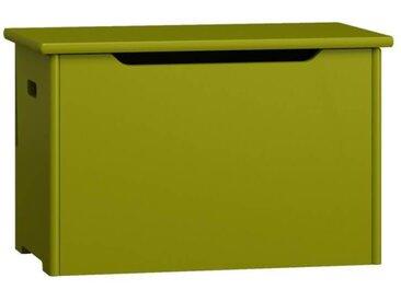 Coffre à jouets - 9 couleurs - Vert