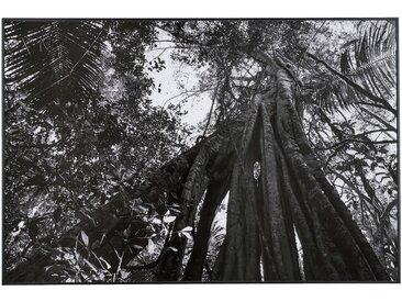 Image encadrée noir et blanc 122x82cm Alinéa