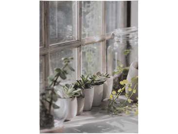 Toile imprimée plantes 60x80 cm - alinea