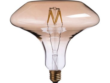 Ampoule Décorative Led D19cm Culot E27 - alinea