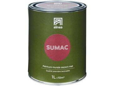 Peinture acrylique mate multi-supports 1L rouge sumac Alinéa