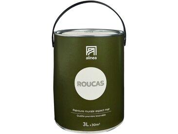 Peinture acrylique mate multi-supports beige roucas 3L Alinéa