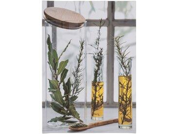 Toile imprimée herbes aromatiques 50x70 cm - alinea