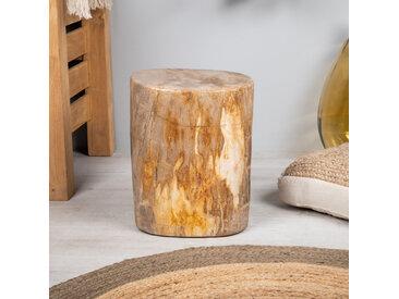 Pouf bois pétrifié brun