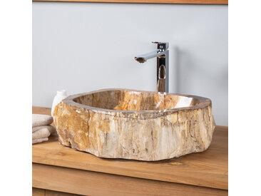 Vasque de salle de bain à poser en bois pétrifié fossilisé 51 CM