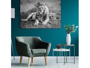 Radiateur design électrique Lion