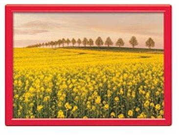 Cadre Clip Color A4 rouge