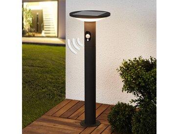 Borne lumineuse solaire Jersy, graphite, LED 60 cm– LAMPENWELT.com