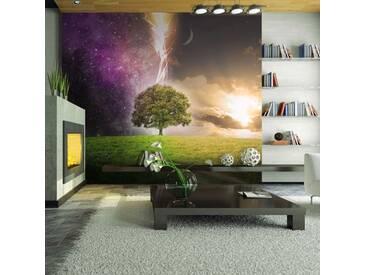 Papier peint - Magic tree