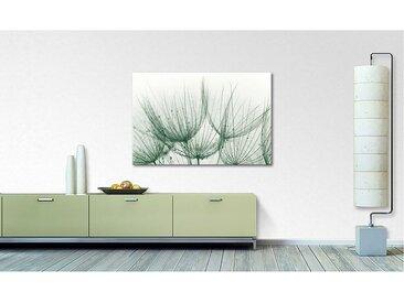Impression sur toile Detail of Dandelion