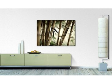 Impression sur toile Bamboo Forest