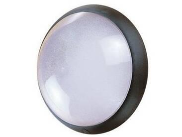 Hublot extérieur fluo 1X9W Ø 300mm noir verre avec lampe 4000K 2G7 et ballast elec CL2 IK04 IP44 OPTION EBENOID 078312