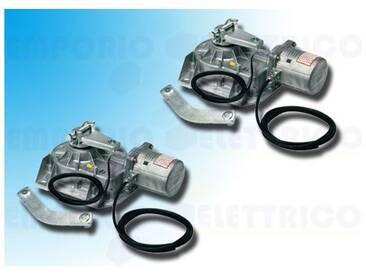 came deux motoréducteurs 230v 001frog-ae frog-ae ( 2 pièces )