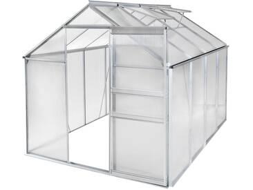 Serre de Jardin, Serre de Jardinage, Abri de Jardin 7,70m³ Aluminium avec 2 Fenêtres de Toit 250 cm x 190 cm x 195 cm