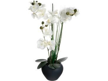 Atmosphera - Orchidée vase céramique gris H.53
