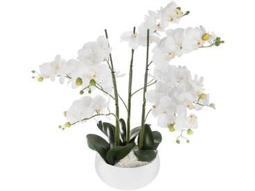 Atmosphera - Orchidée pot céramique blanc H65