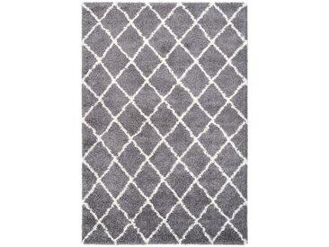 Tapis scandinave shaggy rectangle Leon Gris 160x230