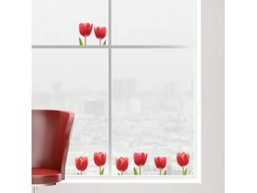 Stickers pour fenêtre Tulipes