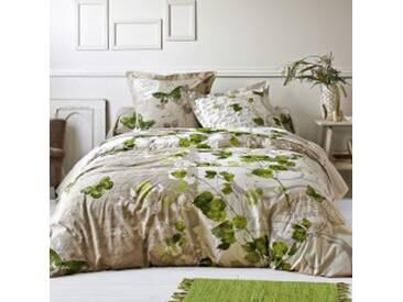 Drap-housse 1 pers : 90x190cmbeige / vert Linge de lit Célestine polyester-coton