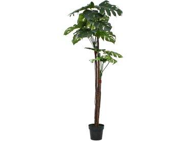 Plante artificielle avec pot Monstera 170 cm Vert - vidaXL