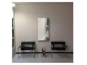 Radiateur miroir à eau chaude en verre trempé jusquà 709 Watt Barry
