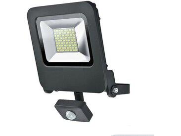 OSRAM Projecteur à LED Endura Flood Sensor - 50 W - Noir chaud