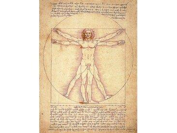 Tableau Homme de vitruve Leonardo Da Vinci  55 x 75 cm