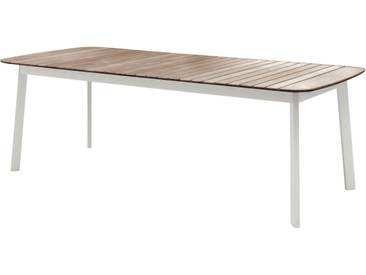 Emu Table Shine - teck - M - blanc